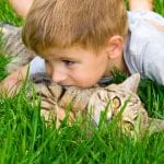 Growing Health: Lawns perfect for playing on