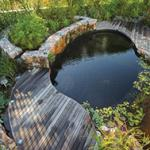 Eco pool gardening