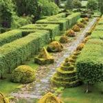 Make a herb walk using thyme