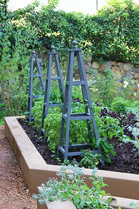 Top 10 tips to start a food garden