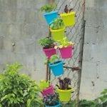 Gateway to your Garden