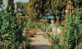 The Bryanston Organic Food Garden