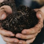 Prep Your Soil – The Organic Way