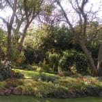 Gauteng Open Gardens in November