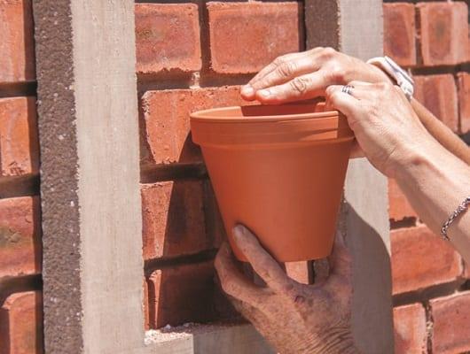 frame your pot plants