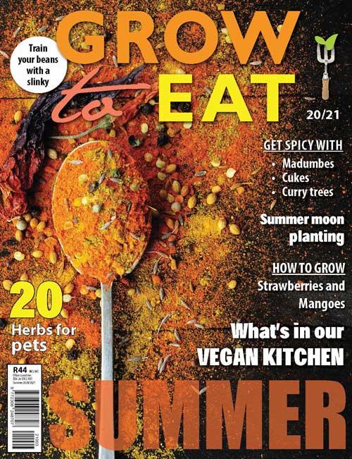 GTE Mag