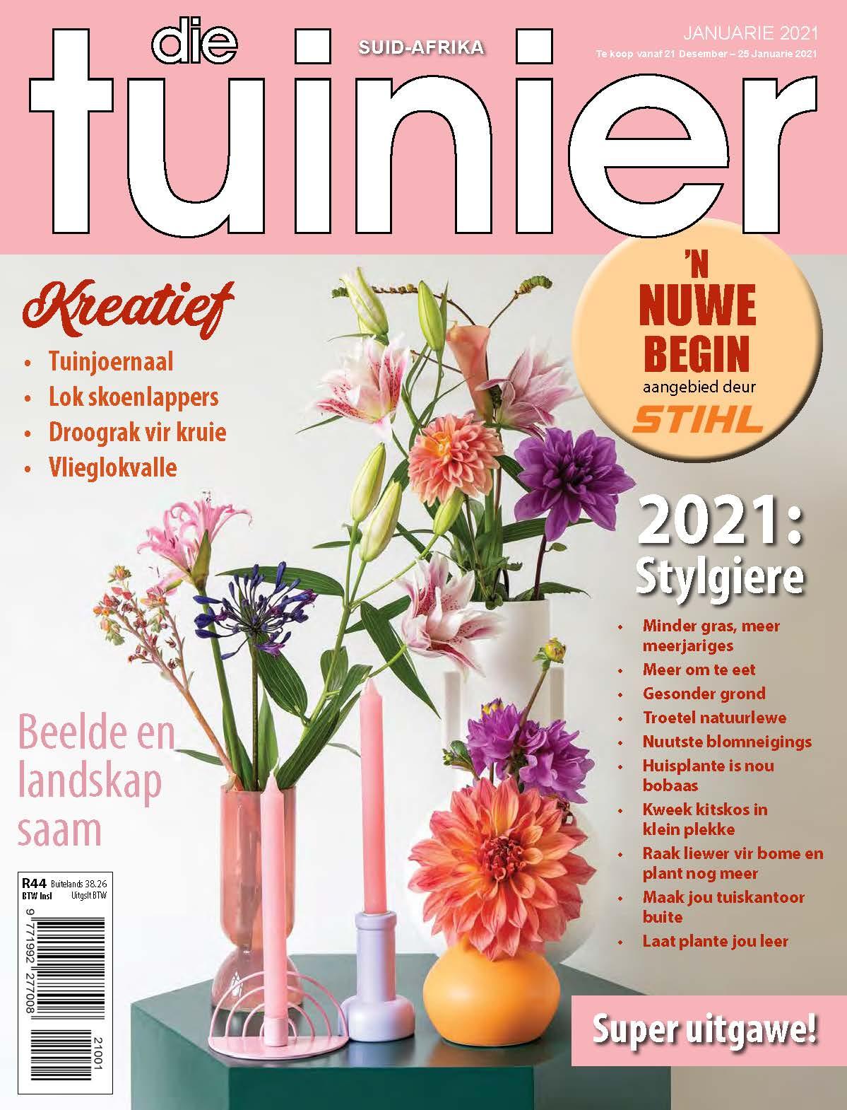 DT Mag