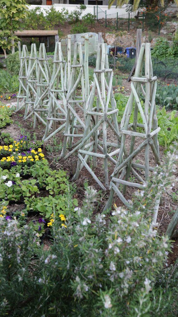 renew veggie garden