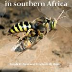 Wasps and Bees in Southern Africa