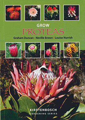 Grow-proteas.jpg