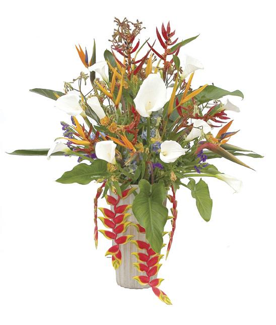 garden-plants-vase.jpg