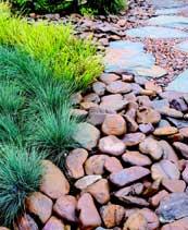 river-stones.jpg